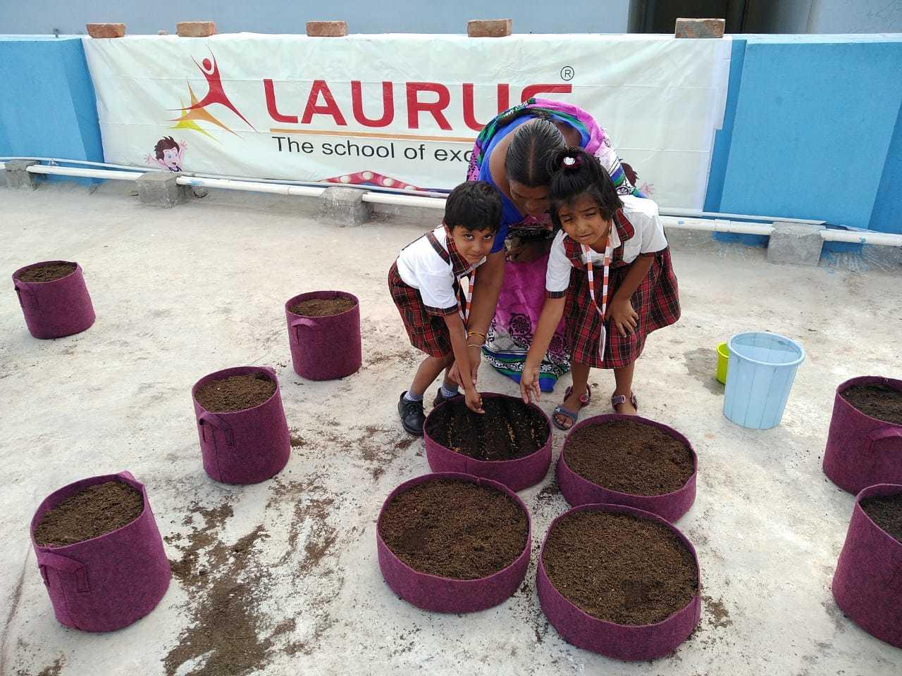 Laurus School Grows Their Own Vegetables With Homecrop